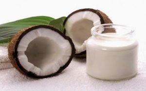kargoku.id - tepung kelapa